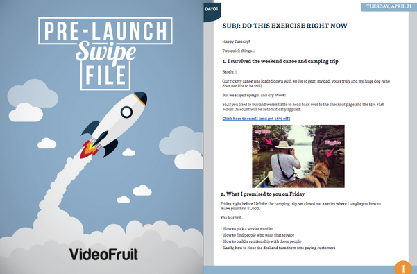 Videofruit swipe file offered as a content upgrade